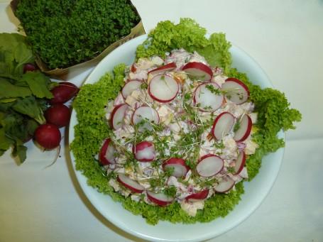 Kresse- Radieschensalat mit Äpfeln -  (Foto: Eva Ulram - Nicht zur freien Verwendung)