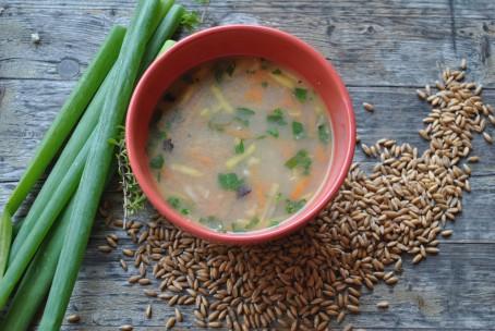 Dinkel-Gemüse-Schrot-Suppe - Zu sehen ist eine rote runde Suppenschüssel mit der hellbraunen Suppe darin. In der Suppe sind Gemüse und Kräuter zu erkennen. Links neben der Schüssel liegen einige grüne Schnittlauchhalme. Rechts und vor der Schüssel liegen Getreidekörner. (Foto: Romana Schneider-Lenz - Nicht zur freien Verwendung)