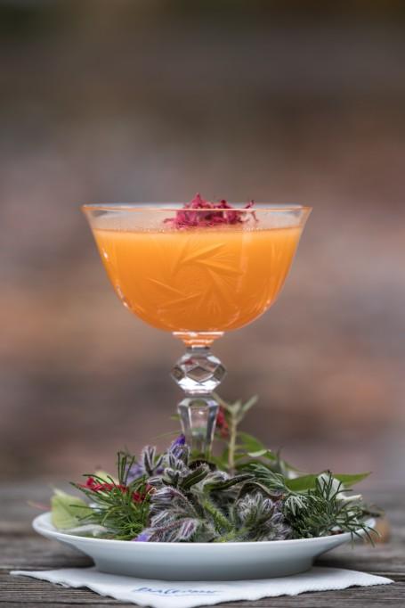 Marille trifft Schwan - Auf einem weißen Teller steht ein Glas mit Stiehl. Darin befindet sich der orangfarbene Cocktail. An der Oberfläche ist er mit roten Rosenblüten dekoriert. Auf dem Teller rund um das Glas sind Blüten und Kräuter als Dekoration platziert. (Foto: Erwin Pils - Nicht zur freien Verwendung)